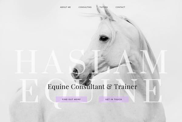 Equine Trainer